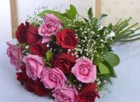 Online Flowers Delivery - Cake Bhandar