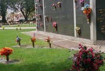 cemeteries all around the world / by Deanna Edlund