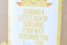 Sunshine package