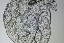Poliedro cuore