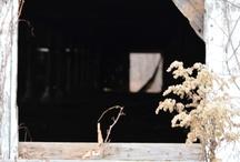 Barns Rustic