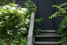 black house/colorful decor/backyard.. / no pin limits..
