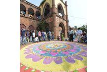 Sankranthi Rangoli Celebrations