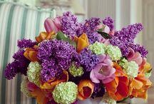 Çok yakında!  / Rengarenk çiçek tasarımlarımız çok yakında www.escicek.com'da  #escicekcom #çiçekler #rengarenk #tasarım #çarşamba #yakında #esçiçek