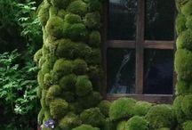 Zahrady z celého světa a divadelní plakáty / zahrad, zahradničení, zahradních doplňků, návrhů zahrad a zahradních designových prvků