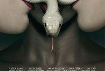 American Horror Story: Coven / by Rachel Tsoumbakos
