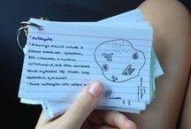 School:)