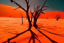 Sand desert / 사막