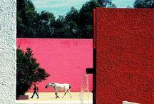 Color in Architecture