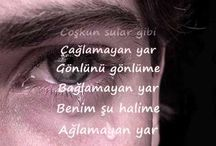 türkü sarki