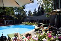 Molly Gibson Lodge - Summertime / http://www.mollygibson.com/
