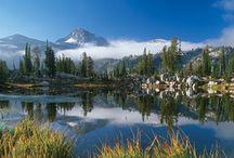 Oregon / by Cheryl W