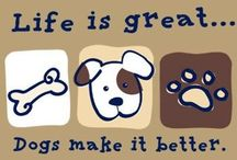 Dog Stuff / Fun stuff for dogs + DIY ideas for dog owners. Super helpful tips to save time & money on pet care, dog products, and things around the house. More fun dog stuff at The Fun Times Guide to Dogs: http://dogs.thefuntimesguide.com + Homemade Dog Treats Recipes: http://www.pinterest.com/lynnettewalczak/homemade-dog-treats/ / by Lynnette Walczak (FunTimes Guide)