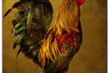 Roosters.