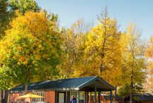 Camping Cabins / Take a look at all that our camping cabins have to offer!