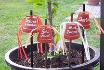 Etiquettes botaniques