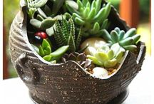 In the garden / Garden ideas, garden craft, plants, green thumb!