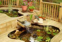 Gardening / by Carol Doody