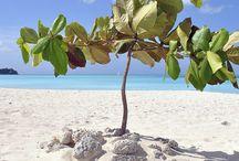 Luxury Caribbean Resorts / Luxury Caribbean destinations, best Caribbean beach destinations, most popular Caribbean destinations, holiday destinations in the Caribbean, & luxury Caribbean Vacations.