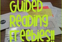 Guided reading/guided reading plus