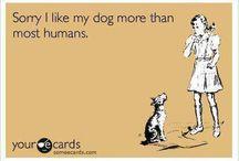 Doggies / by Bonnie Kalwat