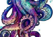 осьминог и медуза