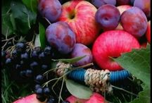Vrucht bomen