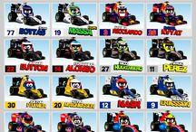 Minidrivers F1