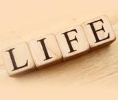 English Teaching Life