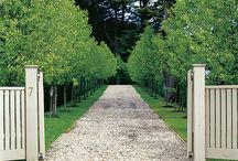 Garden: Main Drive Entrances / by Laara Copley-Smith Garden Design