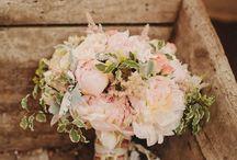 Matrimoni Rosa