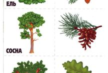тема деревья