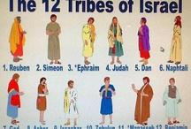 Biblical Themes