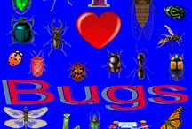 I Love Bugs / a designs my 14 year son did