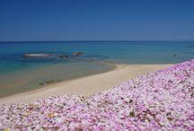 Sizzling Sardinia