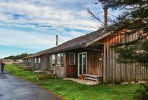 Kalaloch Cabins / The Kalaloch Cabins, nestled one row back from the Bluff Cabins, are just a few hundred feet from the bluff's edge. Cozy and quaint, these Cabins can accommodate up to six guests, five if all full grown! All cabins are non-smoking and pet-friendly.