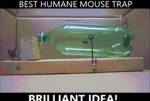 fajne pomysły