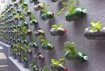 do it yourself - garden