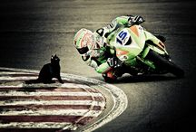 Racing / by mjfnet