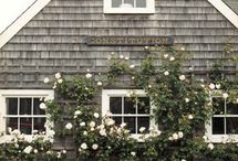 Cottages of Desire / Current Cottage Projects and Aspirations