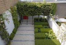 Garden - courtyards