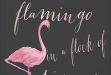 """Flamingo"" Inspired Interior Decor"