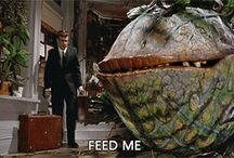 Feed Me / What it says