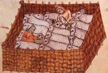 Medieval Sheep & Wool / Characteristics of sheep and their wool in the 12th century.