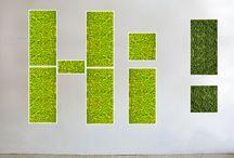- BIO CANVAS + LEAF Living Wall -