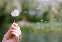Kiab ♥ petits moments de bonheur