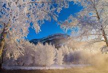 Weather/Seasons / by Sarah Hetherington