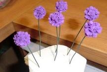 Plants & Flowers in miniature