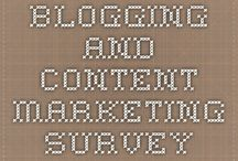 Blogging Studies / Research