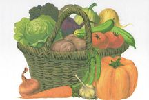 Овощи / Картинки, карточки, стихи, загадки, раскраски на тему овощи